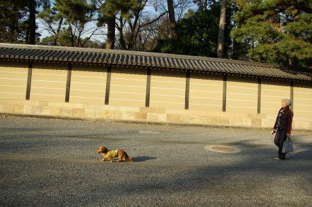 砂利道キライ.jpg