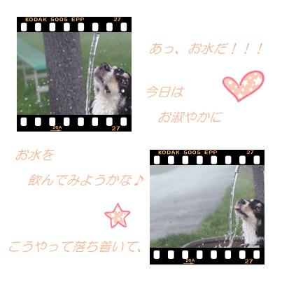 カワイコちゃん1.jpg
