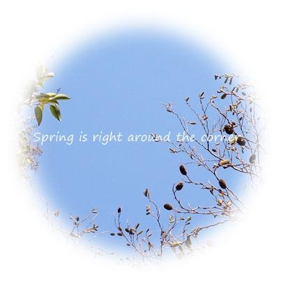 春はすぐそば.jpg