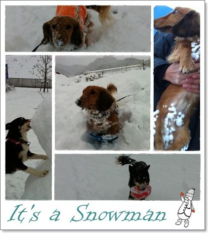 雪だるま♪.jpg