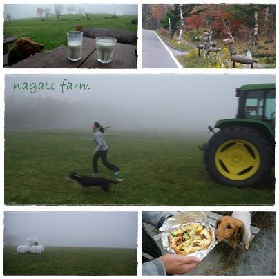 nagato farm.jpg